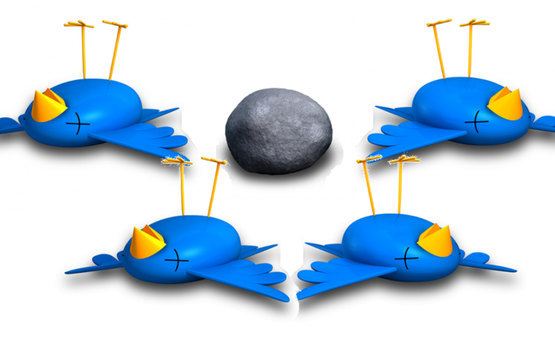 CLIENT SATISFACTION SURVEYS: HOW TO KILL 4 BUSINESS BIRDS WITH 1 MARKETING STONE.